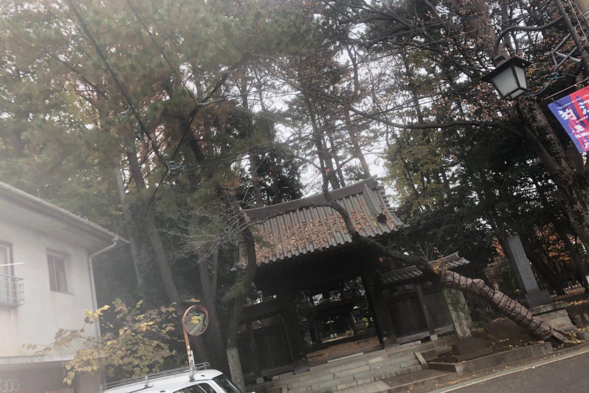 狛江、泉龍寺