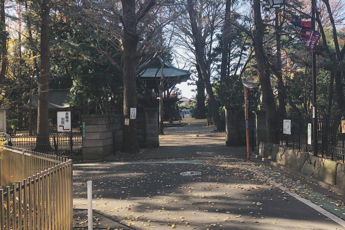狛江の紅葉、泉龍寺